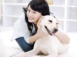 狗狗几种疾病会传染给人类
