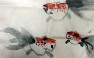金魚飼養中傳統容器的介紹