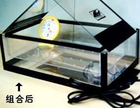 家庭孵蛋育苗两用透明孵化盒
