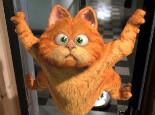 从《加菲猫》看猫咪喜欢的食物
