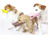 为什么有的狗狗爱咬人