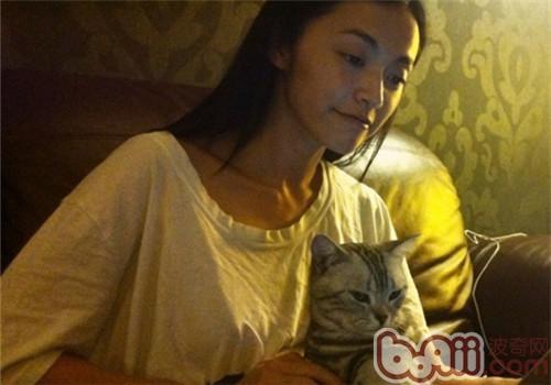 姚晨与她的猫