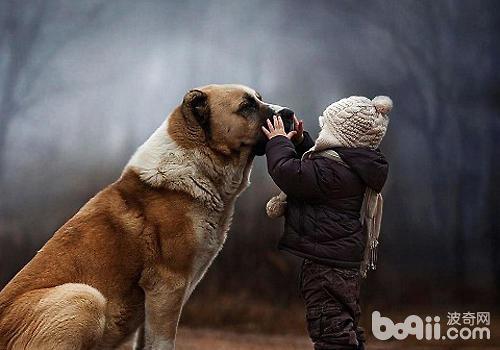 小孩于狗可爱图片