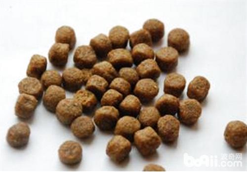 狗粮的种类划分及特点分析