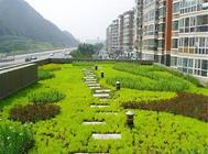 屋顶绿化对人们的好处分析