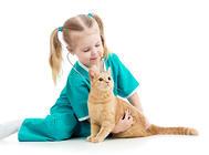 浅谈猫咪的泻药
