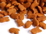 猫粮中的肉类副产品是什么