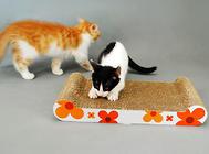 为什么要使用猫抓板