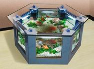 如何清理鱼缸