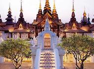 """泰国不仅盛产妖,猫咪也是""""特产""""哦"""