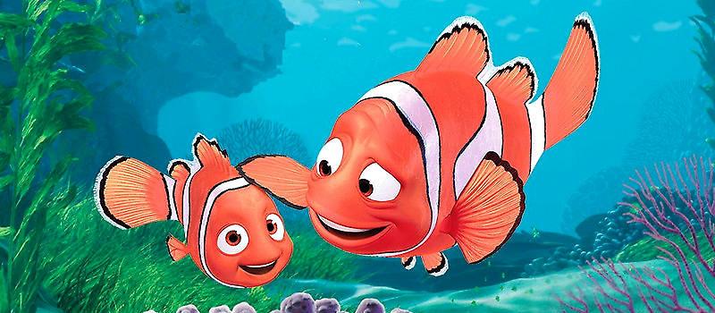 从《海底总动员》至今已经十三年了,看着活跃在荧幕的马林,尼莫和多莉