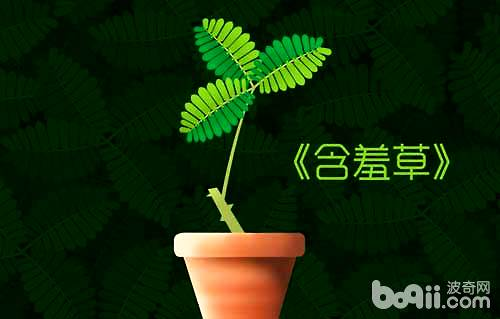 可以预报天气的植物有哪些