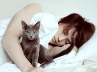 萌猫与明星更配?韩星爱猫大盘点