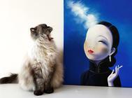 二手烟对于猫咪有哪些危害?