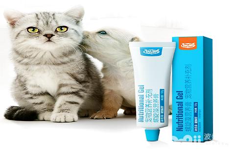 让猫咪发腮,需要多久喂一次WOWO猫咪营养膏?