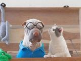 丑萌沙皮狗和小猫形影不离