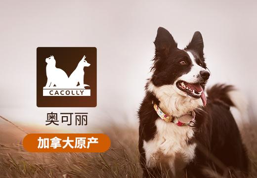 CACOLLY/奥可丽