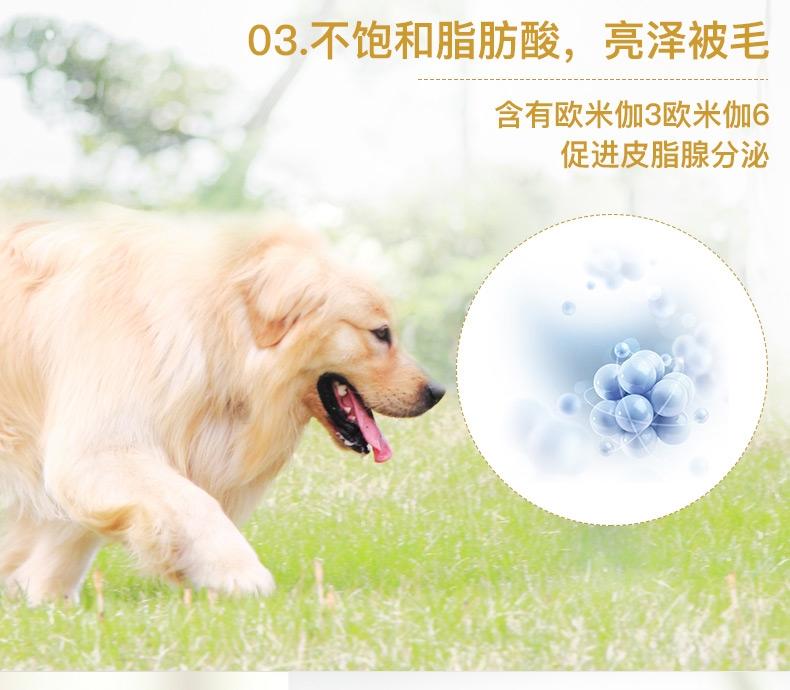 法国皇家ROYAL CANIN 金毛成犬粮 14kg(3.5kg*4) GR25