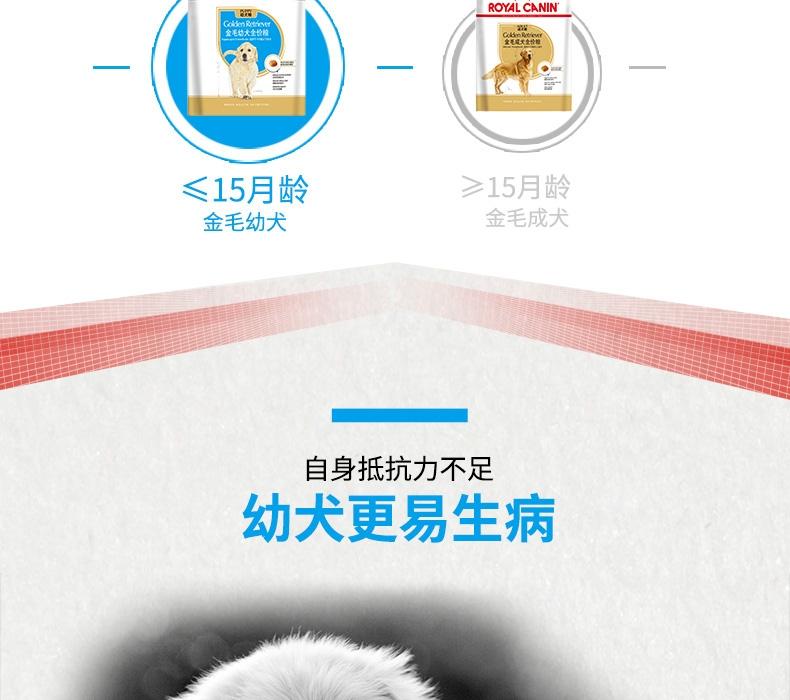 法国皇家ROYAL CANIN 金毛用幼犬粮 14kg(3.5kg*4)