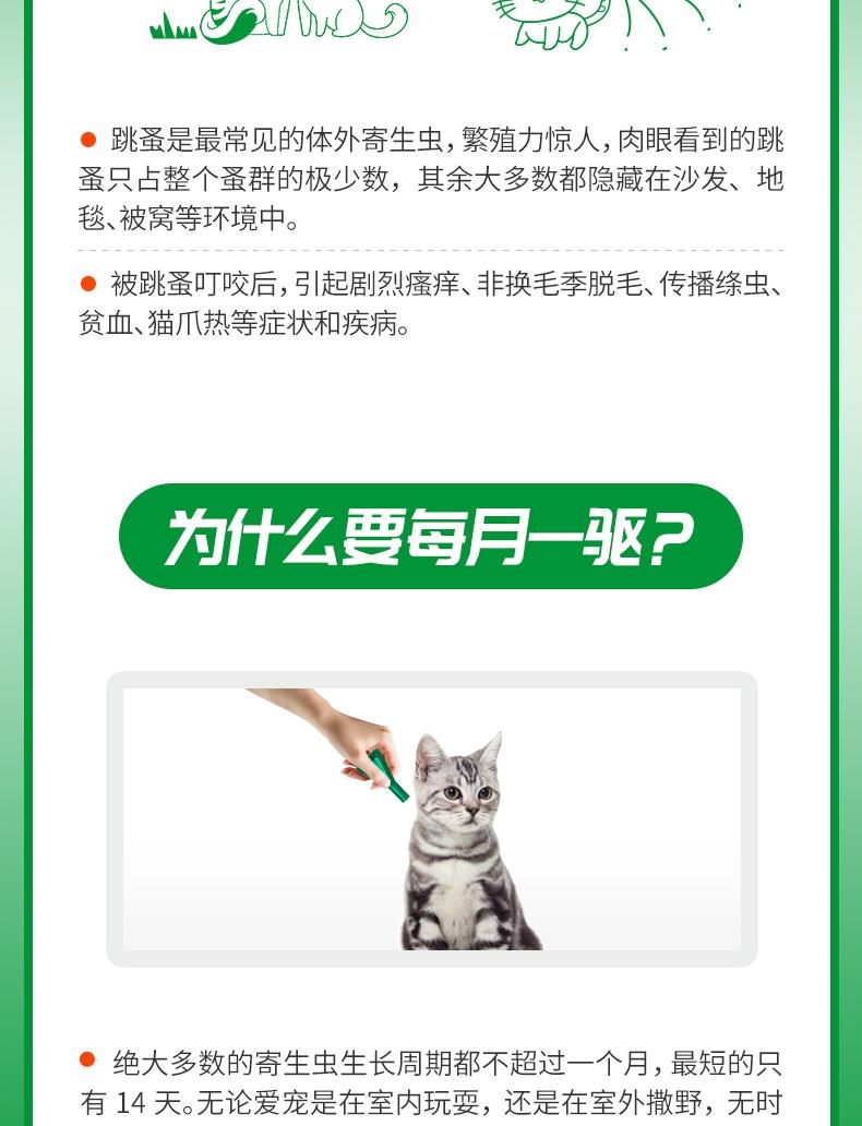 福来恩 猫用增效灭虱滴剂加强版0.5ml 单支装无说明书 猫体外驱虫 法国进口