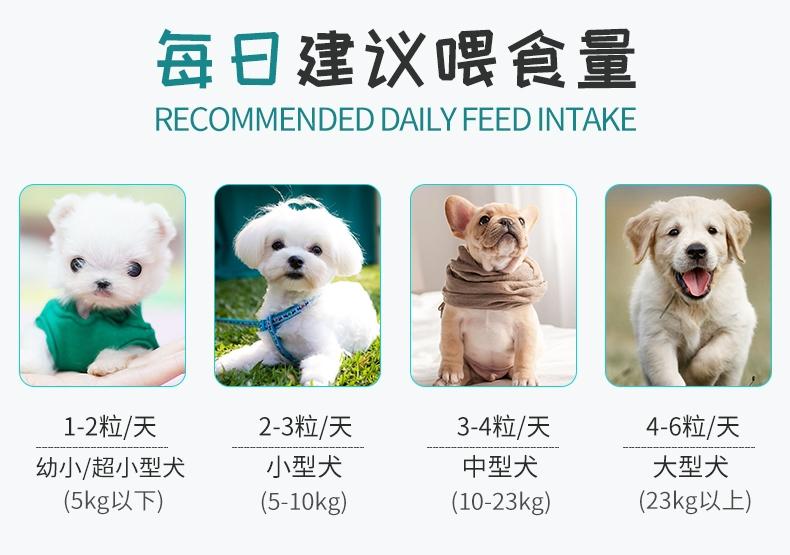 BOTH 幼犬山羊奶果冻布丁15g*50粒桶装 狗零食