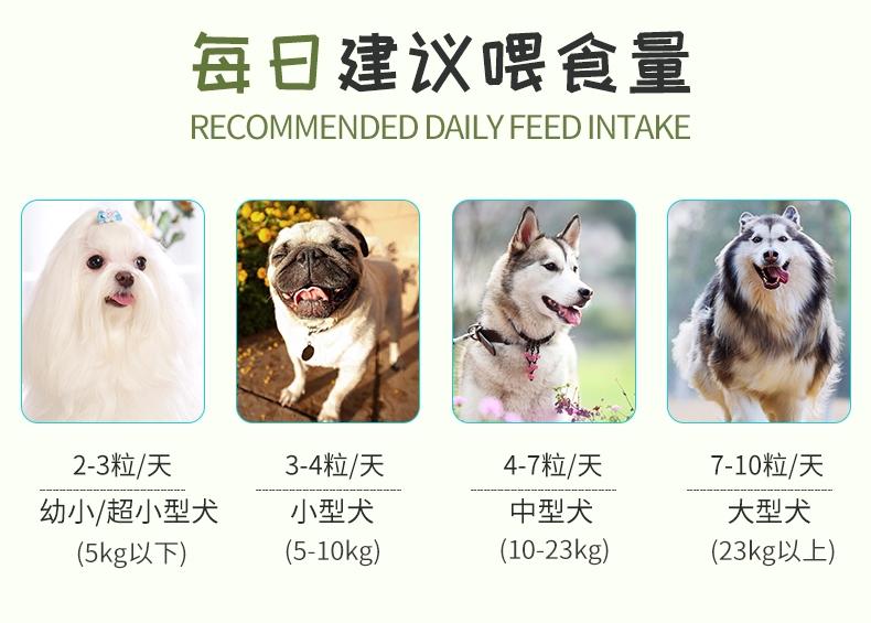 BOTH 成犬山羊奶果冻布丁狗零食 15g*50粒桶装
