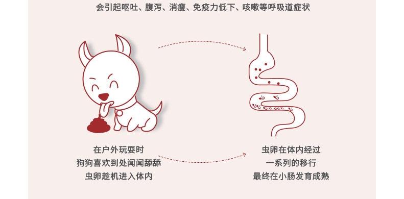 福来恩犬心保 牛肉块11kg内小型犬体内驱虫药单粒 蛔虫钩虫心丝虫打虫药