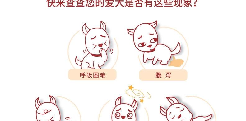 犬心保 牛肉块体内驱虫药 适用12kg-22kg内中型犬 单粒