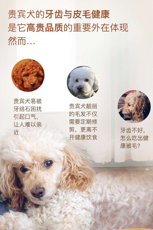 法国皇家ROYAL CANIN 泰迪贵宾成犬粮专用狗粮500g PD30
