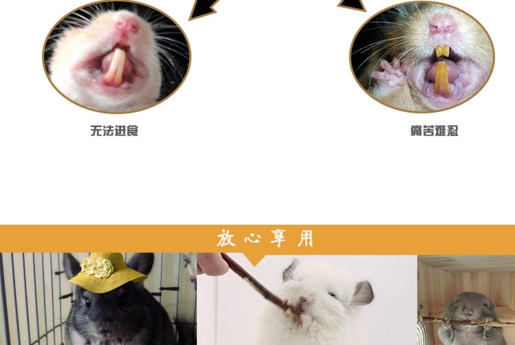 New Age纽安吉 小动物磨牙苹果枝 洁牙