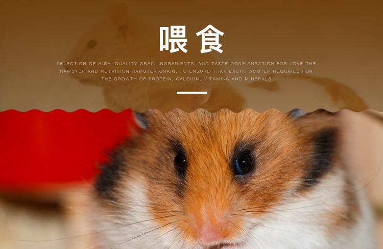 Minishow 迷你秀仓鼠盛宴营养鼠粮800g