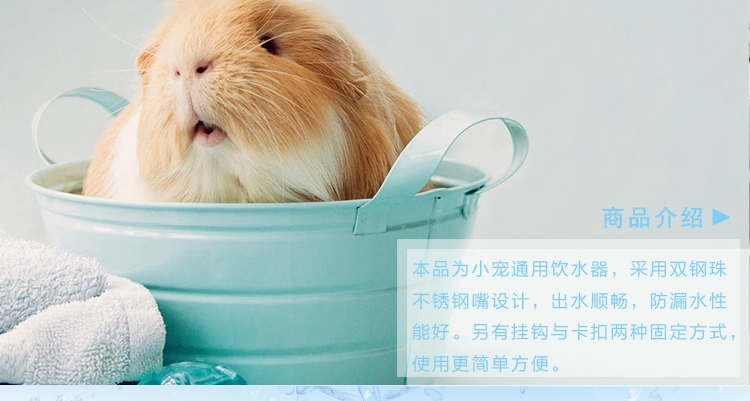 宠波尔 防漏钢珠头水樽仓鼠兔龙猫饮水器水壶