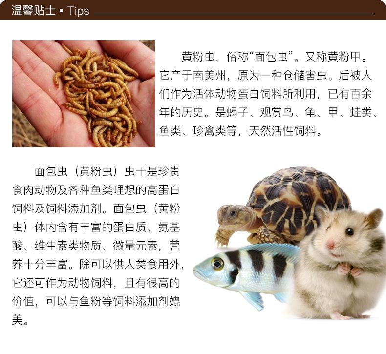 优质面包虫干黄粉虫干龙猫仓鼠粮食龙鱼饲料加量装2800ml