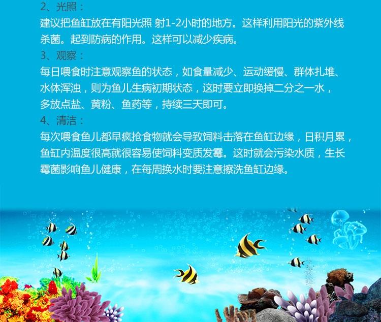 信友系列 鱼缸刷 40cm