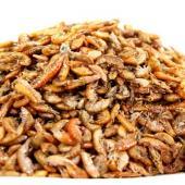 散装虾 200g 龟饲料鱼食地图鱼虾干 水族主粮