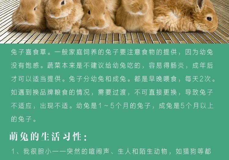 新鲜紫花苜蓿草 兔子牧草1kg