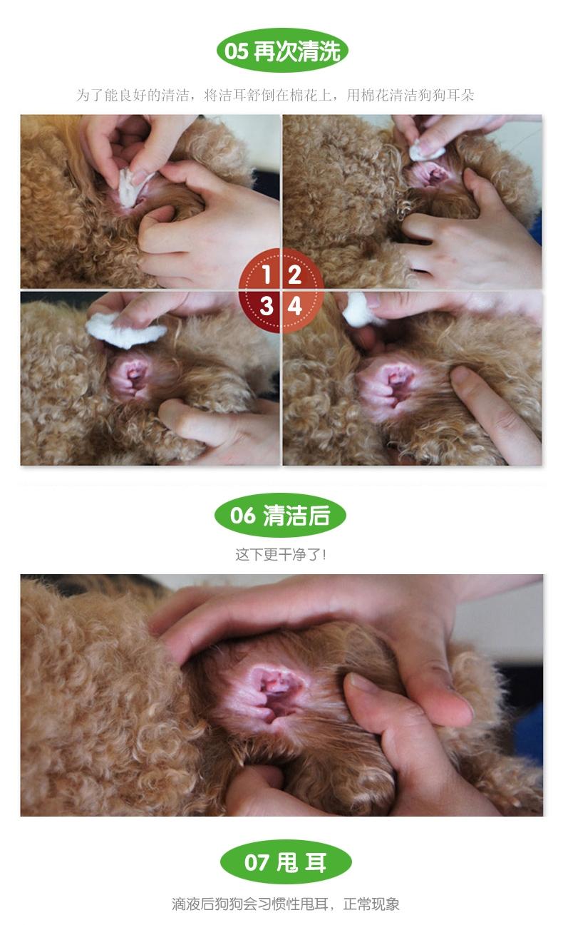 小宠EHD 洁耳舒50ml 滴耳液洗耳水预防耳螨耳炎