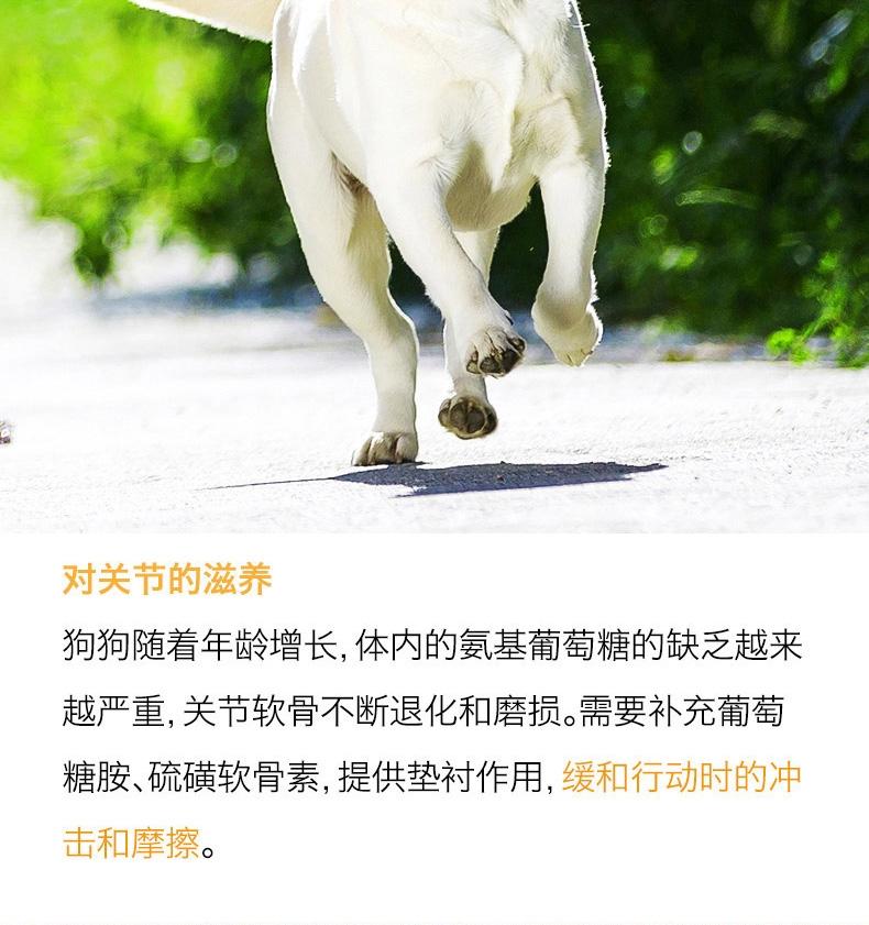 醇粹 高龄老年犬粮高吸收天然狗粮3kg