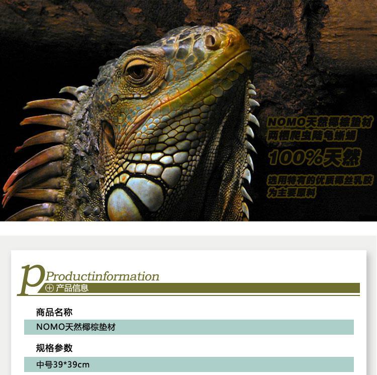 爬虫用椰棕垫材苏卡达爬虫箱造景中号39x39cm