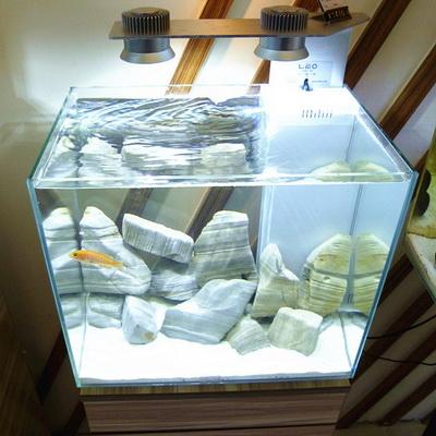 LEO 超白缸带LED灯海水/龟/虾/草缸水族箱鱼缸W450/W450H 多款可选 小图 (0)