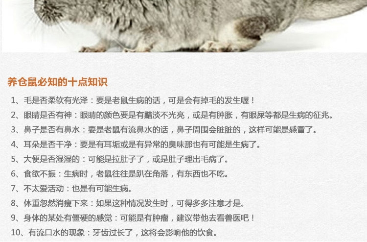 Minishow 迷你秀 小动物零食-香甜菠萝干80g