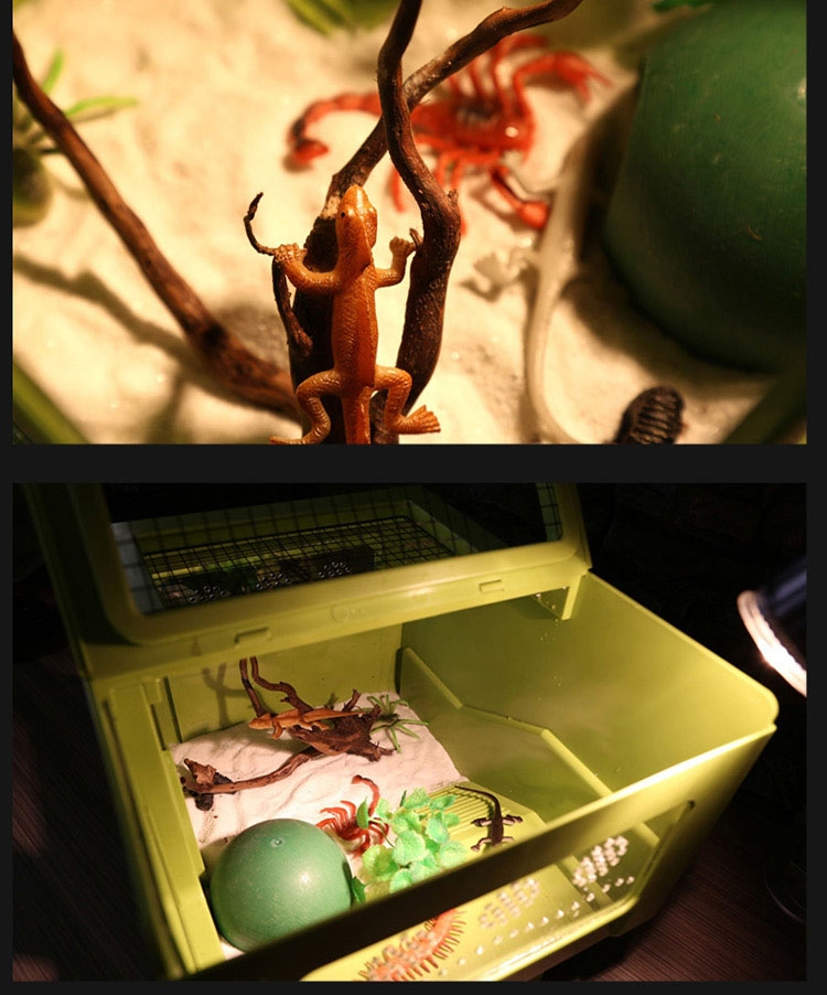 Reptile Structure 地表树保湿椰粉椰土垫材底材50g爬虫蜥蜴蜘蛛蜈蚣蝎子适用