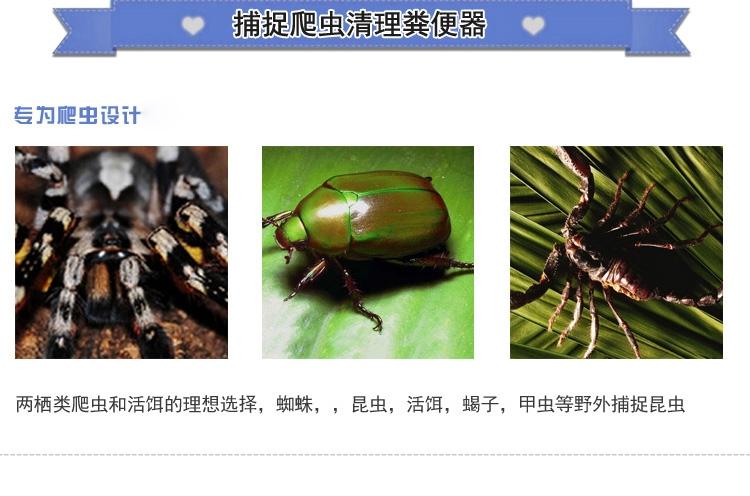 Reptile Structure 爬虫多用途捕虫夹 清理蜥蜴捕虫器蝈蝈蟋蟀昆虫便便