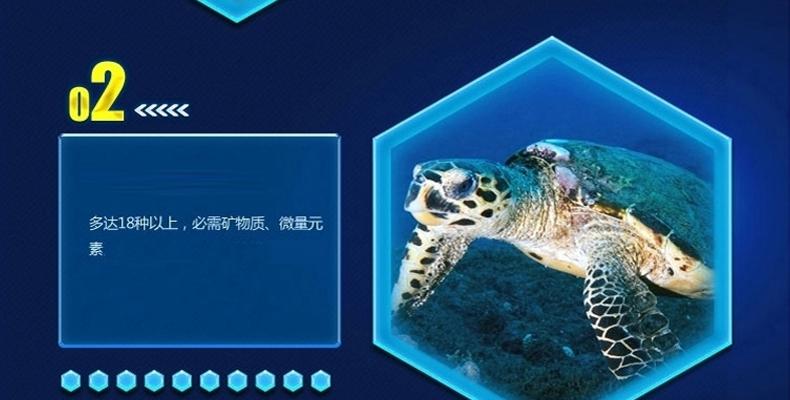 LIFELINE命脉 乌龟水龟粮食饲料 草龟宠物巴西龟幼龟开口粮
