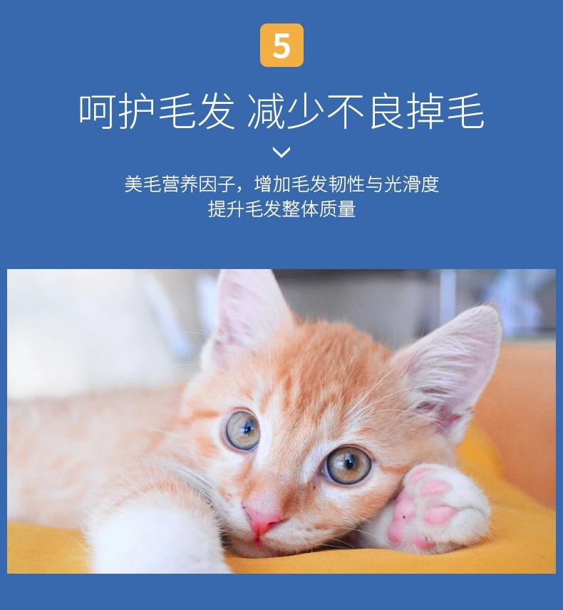 佩玛思特 幼猫及怀孕母猫专用猫粮2kg