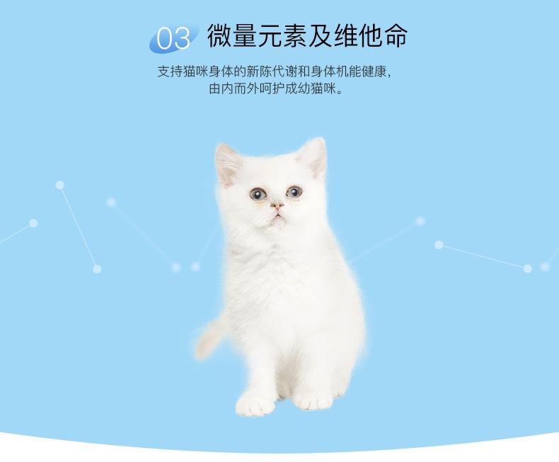 BOTH 幼猫山羊奶果冻布丁16g*15粒 猫零食