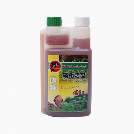 海豚 硝化活菌劑 超濃縮活性硝化細菌