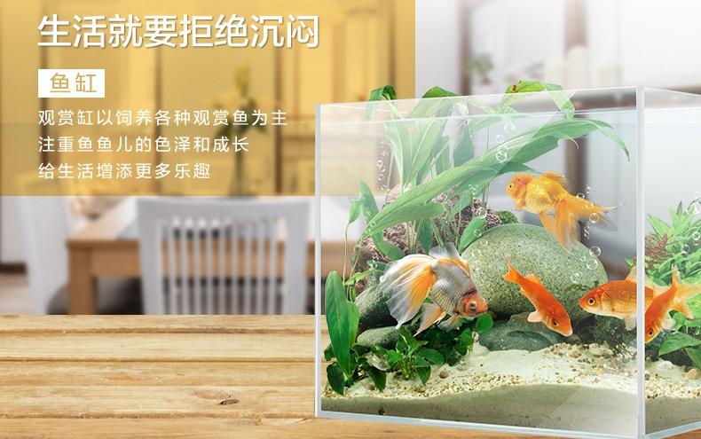 聚宝源 超白缸观赏鱼/龟/虾/草缸水族箱鱼缸 不包含照明灯 多款可选