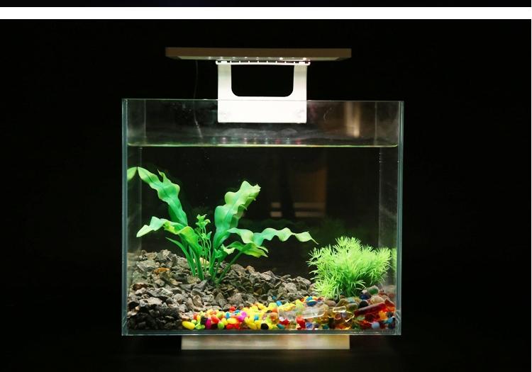 怎样清洗鱼缸,给鱼缸换水