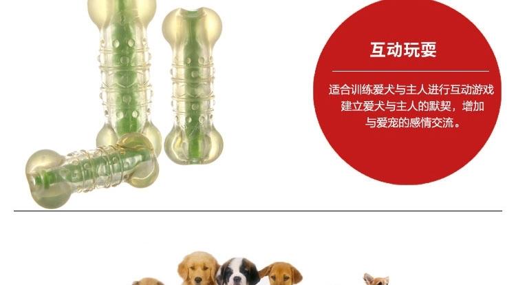 美国petstages 绿咖咖果冻骨 宠物磨牙洁齿玩具